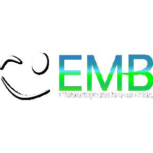 Logo de l'entreprise EMB informatique